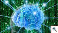 Откуда берётся энергия мозга?